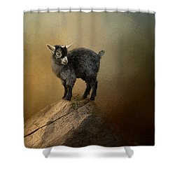 Little Rock Climber Shower Curtain by Jai Johnson