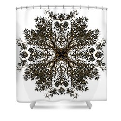 Live Oak Lace Shower Curtain by Debra and Dave Vanderlaan
