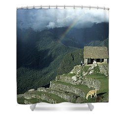 Llama And Rainbow At Machu Picchu Shower Curtain by James Brunker