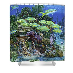Lobster Feast Re0019 Shower Curtain by Carey Chen