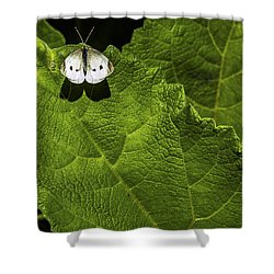 Lonely On A Leaf Shower Curtain by Tim Buisman
