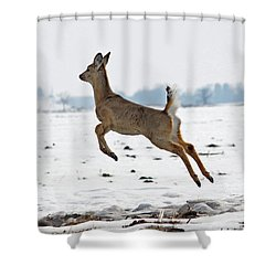 Look I Am Flying Shower Curtain by Lori Tordsen