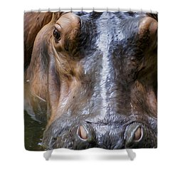 Look Me In The Eyes Shower Curtain by Aged Pixel