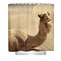 Looking At Ya Shower Curtain by Lourry Legarde
