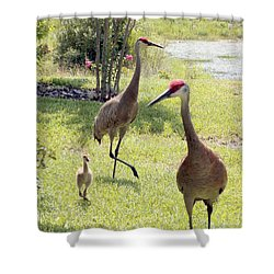 Looking For A Handout Shower Curtain by Carol Groenen