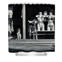 Looking Out The Shoppe Shower Curtain by Silvia Ganora