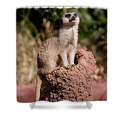 Lookout Post Shower Curtain by Michelle Wrighton