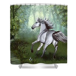 Lost In The Forest Shower Curtain by Kate Black