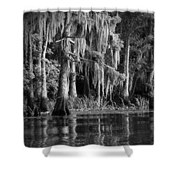 Louisiana Bayou Shower Curtain by Mountain Dreams