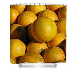 Louisiana Sweets Shower Curtain by Beth Vincent