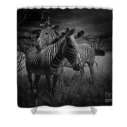 Love Season IIi - African Dream I Shower Curtain by Xueling Zou
