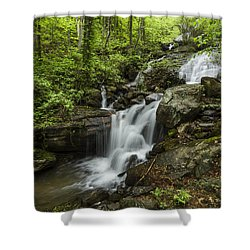 Lower Amicalola Falls Shower Curtain by Debra and Dave Vanderlaan