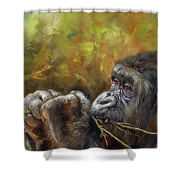 Lowland Gorilla 2 Shower Curtain by David Stribbling