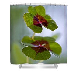 Lucky Lovers Shower Curtain by Maria Ismanah Schulze-Vorberg