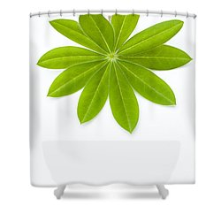 Lupin Leaf Shower Curtain by Anne Gilbert
