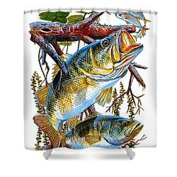 Lurking Bass Shower Curtain by Carey Chen