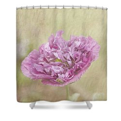 Mabel Shower Curtain by Elaine Teague