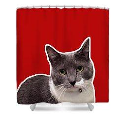 Mac Attack-custom Order Shower Curtain by Linda Woods