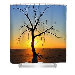 Magic At The Salton Sea Shower Curtain by Bob Christopher