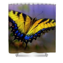 Magic Of Flight Shower Curtain by Karen Wiles