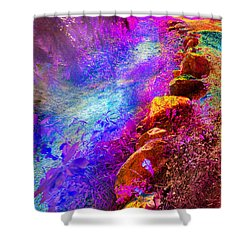 Magic Pathway II Shower Curtain by William Beuther