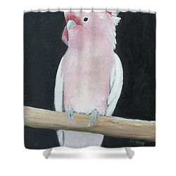 Major Mitchell Cockatoo Shower Curtain by Jan Matson