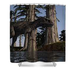 Majungasaurus Hunting For Food Shower Curtain by Kostyantyn Ivanyshen