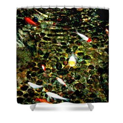 Make A Wish Koi Fishes Shower Curtain by Danielle  Parent