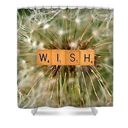 Make A Wish Shower Curtain by  Onyonet  Photo Studios