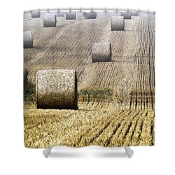 Make Hay While The Sun Shines  Shower Curtain by Heiko Koehrer-Wagner