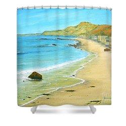 Malibu Road Shower Curtain by Jerome Stumphauzer