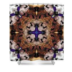 Mandala 17 Shower Curtain by Terry Reynoldson