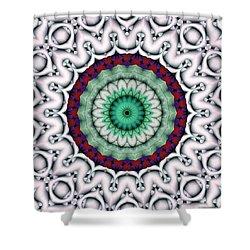 Mandala 9 Shower Curtain by Terry Reynoldson