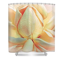 Mango Smoothie Shower Curtain by Darlene Kwiatkowski