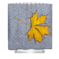 Maple Leaf On Granite 5 Shower Curtain by Alexander Senin