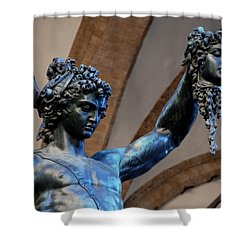 Medusa's Head Shower Curtain by Dany Lison