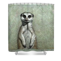 Meerkat Shower Curtain by James W Johnson