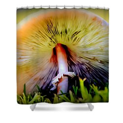 Mellow Yellow Mushroom Shower Curtain by Karen Wiles