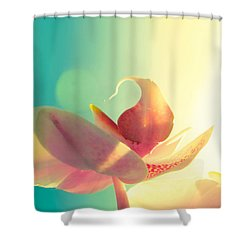 Melody Shower Curtain by Amy Tyler