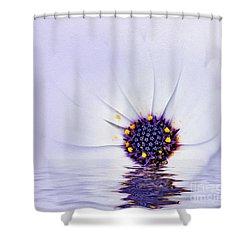Melting Mauve Shower Curtain by Kaye Menner