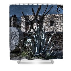 Memories Of The Past Shower Curtain by Heiko Koehrer-Wagner