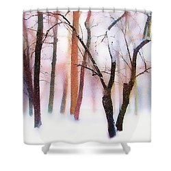 Merry Christmas Card Shower Curtain by Jessica Jenney