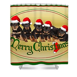 Merry Christmas Rottweiler Puppies Greeting Card Shower Curtain by Tracey Harrington-Simpson