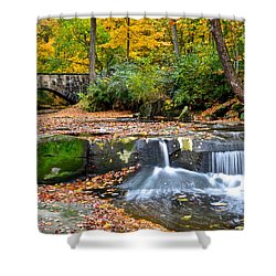 Mesmerizing Shower Curtain by Frozen in Time Fine Art Photography