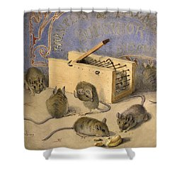 Mice And Huntley Palmers Superior Biscuits Shower Curtain by Agnes Louise Holding