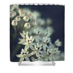 Milkweed  Shower Curtain by Saija  Lehtonen
