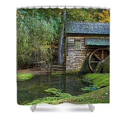 Mill Pond In Woods Shower Curtain by William Jobes