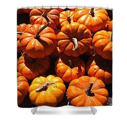 Mini Fall Pumpkins Shower Curtain by Denyse Duhaime