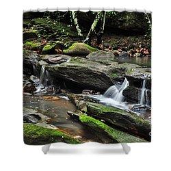 Mini Waterfalls Shower Curtain by Kaye Menner