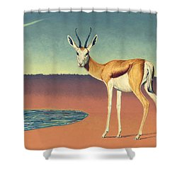 Mirage Shower Curtain by James W Johnson